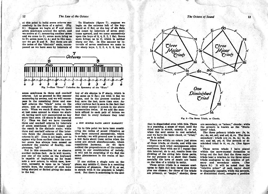 octave8.jpg